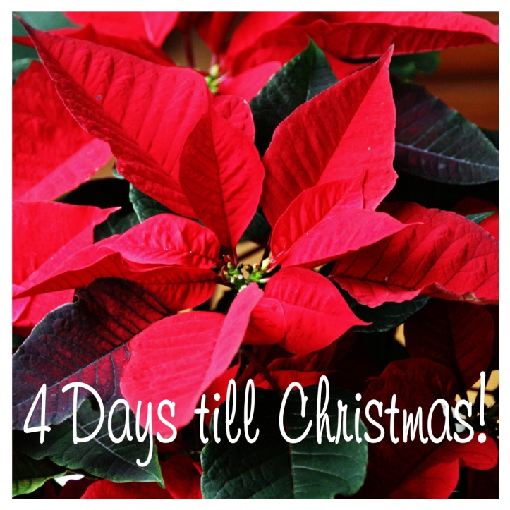 4 Days till Christmas